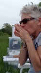 Grass Whistle